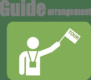 Guide arrangement